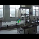 two heads piston filling machine with diving system for 5L pail inline filler equipment price