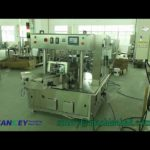 Automatic Giving Bag Rotary Liquid Pouch Filling Machine Video