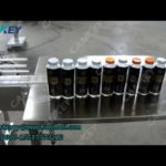 Automatic Bottle Filling Machine for Wine and Beer Video