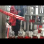 Chili oil filling production line