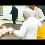 Automatic jar filling machine video for chewing gum, gumball, bubble gum, capsule, tablets