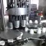 Factory price high speed automatic capping machine,pet bottle screw capping machinery