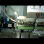 Automatic linear Capping Machine With Cap Feeder Machine automatique de capsulage