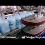 Automatic Lotion Filling Machine Cosmetic High Speed