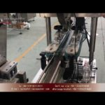 Automaic cap pressing machine with lid sorting and elevating device|bottle pressing machinery