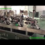 Automatic multi-labels sticker labeling equipment facotry price tags label application machine