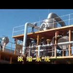tomato sauce, paste, fruit jam processing and packing line from Shanghai Shouda Machinery