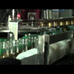 16 Nozzles High Speed Bottle Linear Filling and Rotary Capping Machinery For Juice